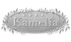 hotel-kamelia-pamporov-bw